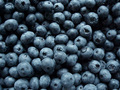 Blueberry - blue photo