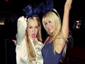 Britney & Paris - paris-hilton wallpaper