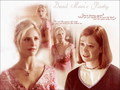 Buffy & Willow - buffy-the-vampire-slayer wallpaper