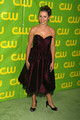 CW Network 2007 Winter TCA Party