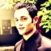 Dan Humphrey-Poison Ivy - haleydewit icon