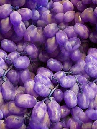 Dark Purple Grapes