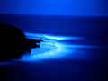 Deep Blue Sea - blue photo