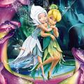 Disney Fairies Redesign - disney-fairies photo