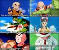 Don't insult krillin xD - dragon-ball-z photo