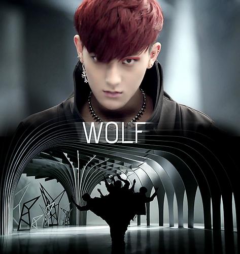 EXO ~ 狼, オオカミ MV