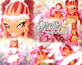 Enchantix Wallpapers. - the-winx-club fan art