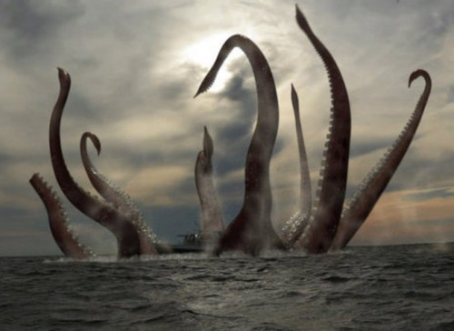 True Writers wallpaper entitled Giant Squid