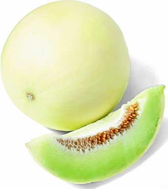 Green Honeydew Melon <333