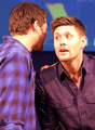 Jensen & Misha ★ - jensen-ackles-and-misha-collins photo