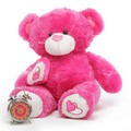 Lovely and Cute Pink Teddy Bear - colors photo