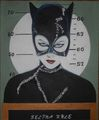 MICHELLE PFEIFFER MUG SHOT - batman-villains fan art