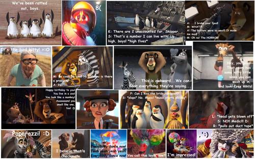 Madagascar trích dẫn Comic