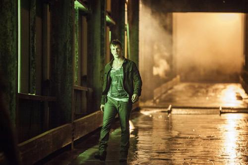 Matt Lanter as Roman