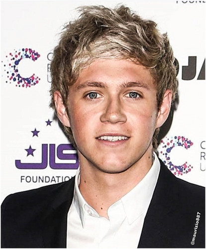 One Direction images Niall horan 2013 HD wallpaper and ...