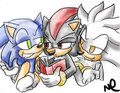 Pathetically Dimwitted -_-' - sonic-shadow-and-silver photo