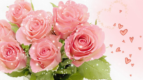Roses wallpaper with a bouquet, a rose, and a camellia titled Pretty Pink Roses