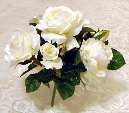 Pure White Rosen