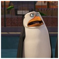 Rico :3 - penguins-of-madagascar photo