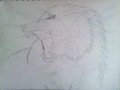 Roaring wolf - drawing photo