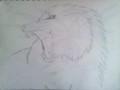 Roaring भेड़िया