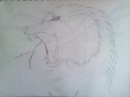 Drawing 壁紙 called Roaring 狼, オオカミ