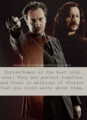SiRemus - moony-and-padfoot photo