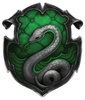 a letra s fotografia entitled Slytherin