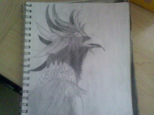 Some kind of bird : /