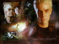 Spike & Dawn - buffy-the-vampire-slayer wallpaper