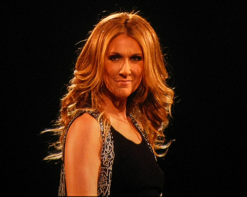 Celine Dion wallpaper probably containing a bustier and a cocktail dress called The Entertainer