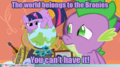 The World belongs to the Bronies! - my-little-pony-friendship-is-magic photo