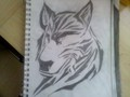 Trible wolf - drawing photo