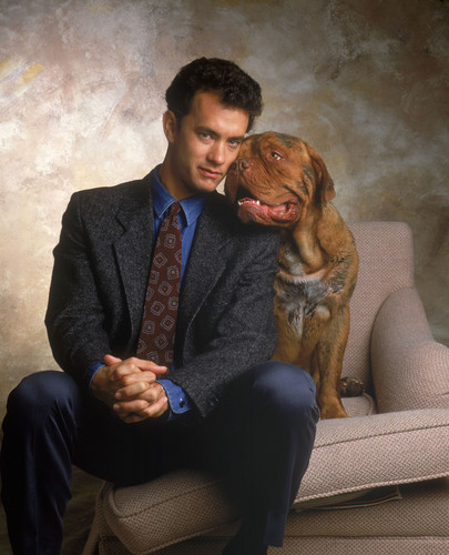 Tom Hanks wallpaper with a chesapeake bay retriever called Turner & Hooch