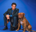 Turner & Hooch - tom-hanks photo