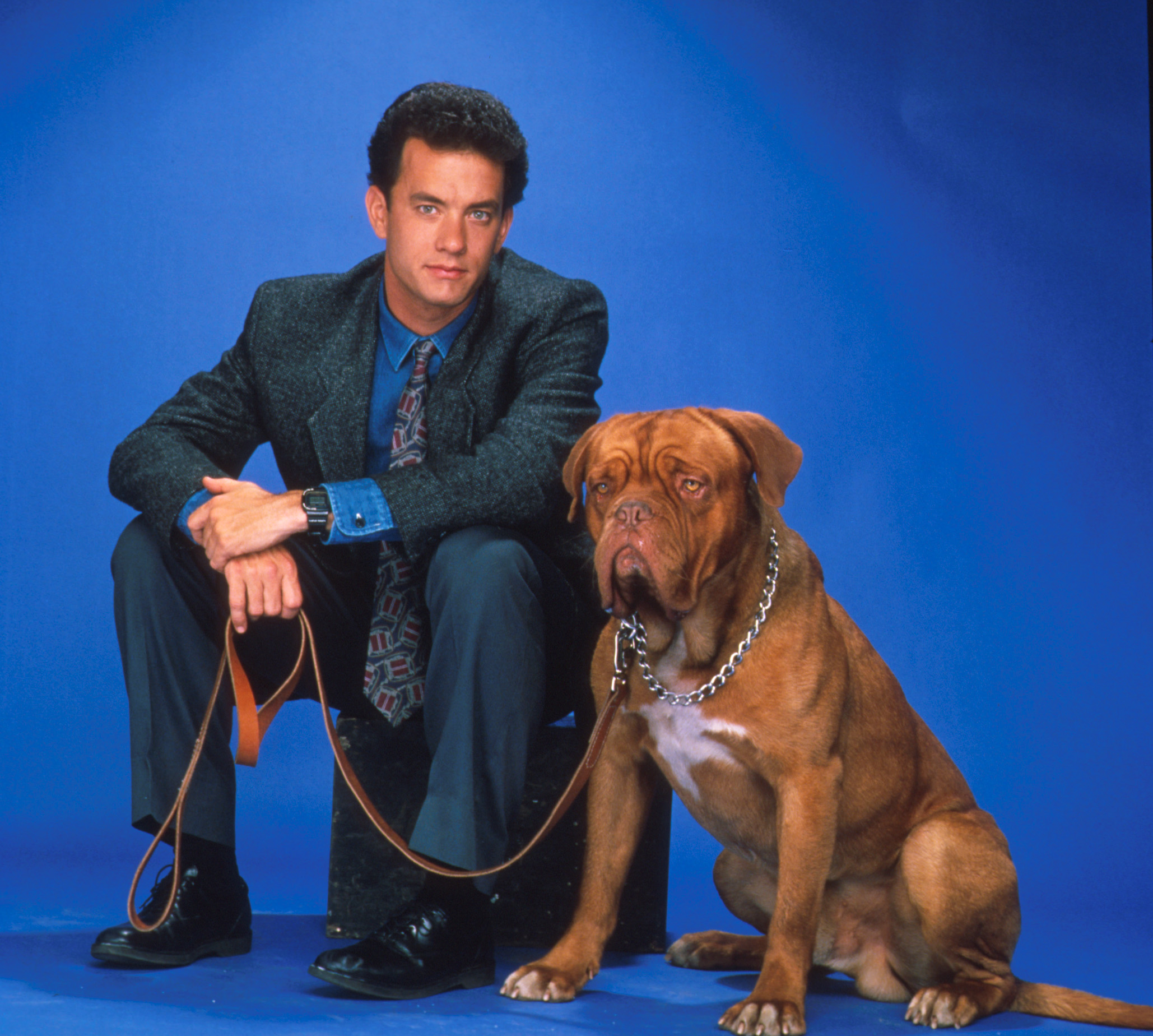How Big Was The Dog In Turner And Hooch