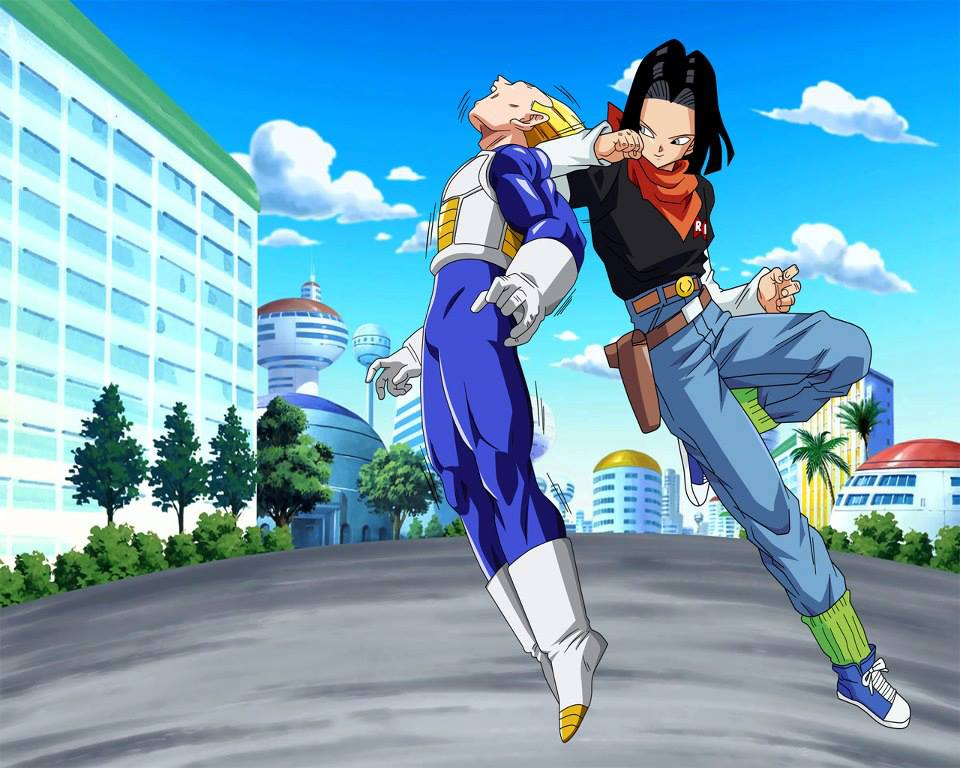 Dragon Ball Z Images Vegeta Vs Android 17 Hd Wallpaper And