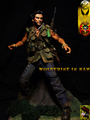 Wolverine in NAM - wolverine photo