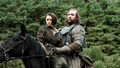 arya and sandor - house-stark photo