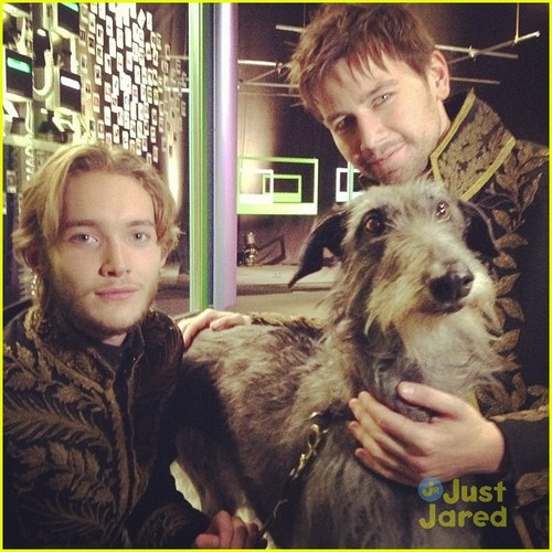 Reign [TV Show] Обои probably containing a scottish deerhound entitled behind the scenes of reign