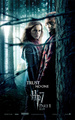 harry potter posters - harry-potter photo