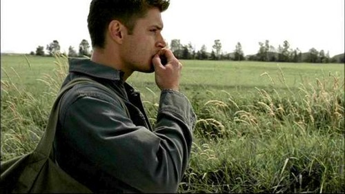 outstanding in his field,dean winchester.