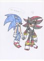 sonadow.... - sonadow photo