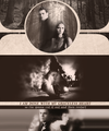 steferine - paul-wesley fan art