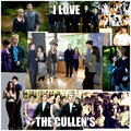 the Cullen's - twilight-series fan art