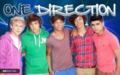 there's only ONE DIRECTION!!!! - one-direction photo