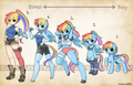 types__rainbow dash - my-little-pony-friendship-is-magic photo