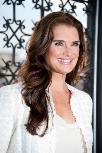 brooke shields wallpaper containing a chainlink fence called 'Blow Out Cancer' event 2012