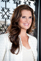 'Blow Out Cancer' event 2012 - brooke-shields photo