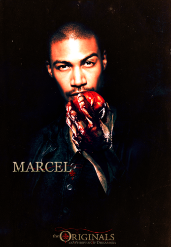 ↳Fan made promo posters for The Originals.